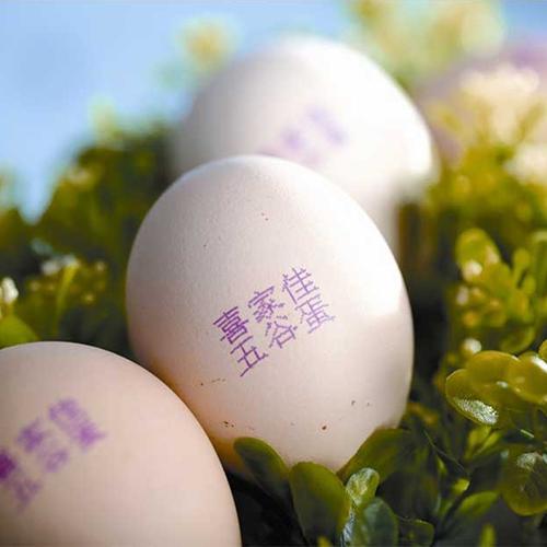 鸡蛋喷码机效果图